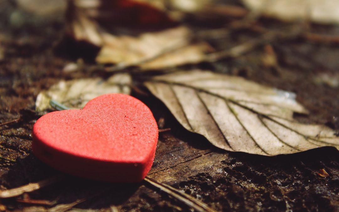 O srcu